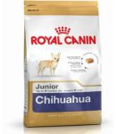 royal cannin chihuahua junior